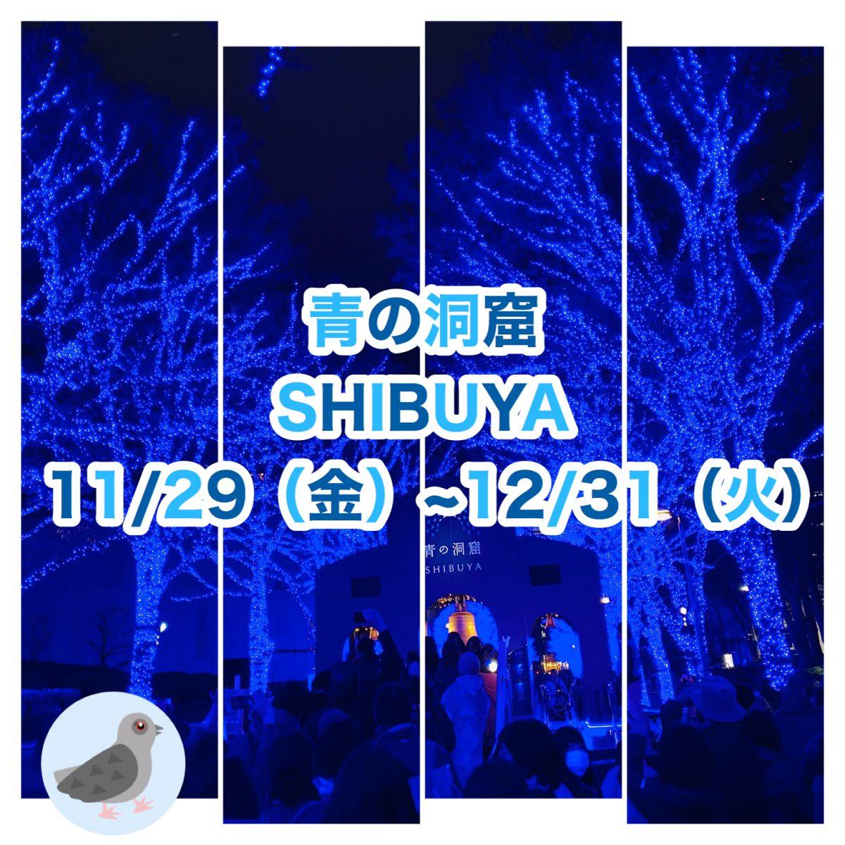 【青の洞窟】渋谷 2019【イルミネーション】