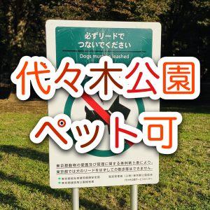 【賃貸】代々木公園の近くでペット可の賃貸マンションに住みたい!